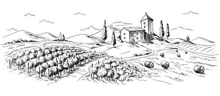 파노라마 그래픽 스타일 손으로 그린 벡터 일러스트 레이 션에서에서 커피 농장 풍경.