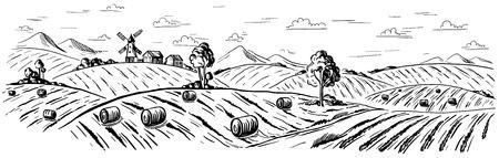 Campo rurale paesaggio grano in stile grafico. Disegnato a mano e convertito in illustrazione vettoriale. Archivio Fotografico - 74267323