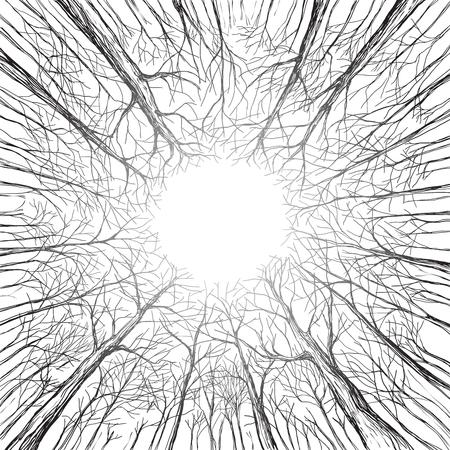 Bomen in een bos kijk omhoog winter herfst Hand getekend en omgezet in vectorillustratie.