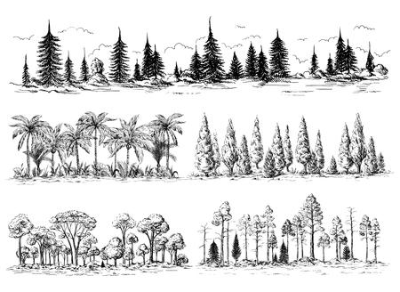 set van verschillende landschappen met bomen bos silhouetten met naald- en bladverliezende exotische palmbomen Amerikaanse redwoods Vector Illustratie