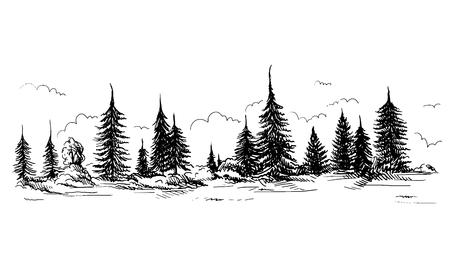 Panoramisch uitzicht op het bos van naaldbomen Hand getekende vectorillustratie Schetsontwerp.
