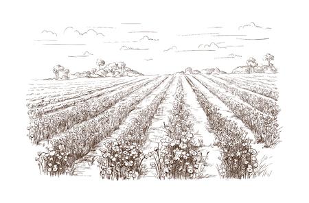 vector dibujado a mano pueblo casas esbozo y la naturaleza Dibujado a mano ilustración.
