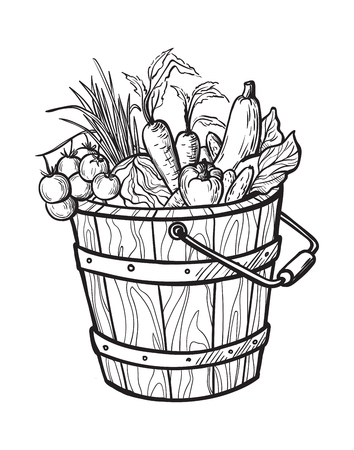 Fresh vegetables in box. Natural food for farmers market. Hand drawn vector illustration. 版權商用圖片 - 78089119