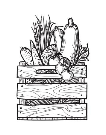 Fresh vegetables in box. Natural food for farmers market. Hand drawn vector illustration.