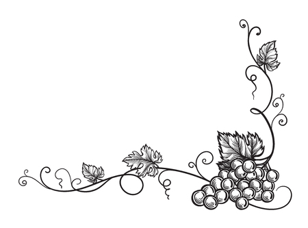 Set of grapes monochrome sketch. Hand drawn grape bunches. Vectores