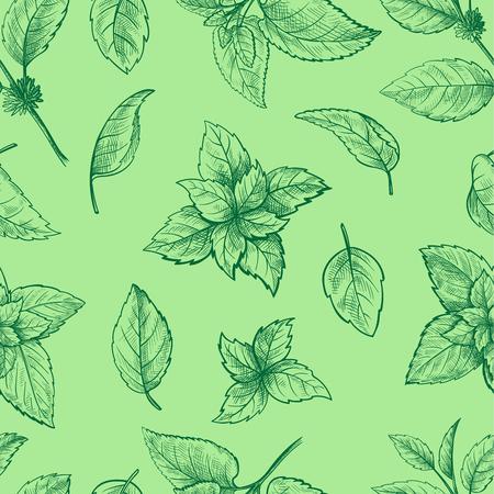 ミント手スケッチ ベクトル図シームレスなテクスチャ。ペパーミントは、メントールの葉が白い背景で隔離の描画の刻まれました。葉ハーブ スペア