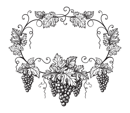 frame of grapes monochrome sketch. Hand drawn grape bunches. Illustration
