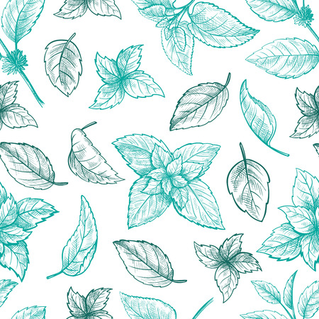 Mint hand sketch vector illustration seamless texture. Peppermint engraved drawing of menthol leaves isolated on white background. Leaf herbal spearmint plant