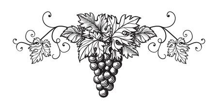 Set of grapes monochrome sketch. Hand drawn grape bunches. Banco de Imagens