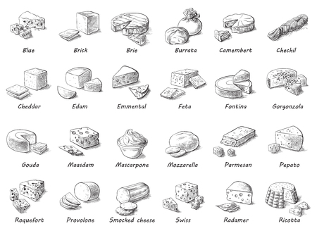 Croquis graphique de différents fromages. Ensemble vectoriel de produits laitiers réalistes. Collection isolée de caillé utilisée pour la conception de logo, le livre de recettes, le menu publicitaire de fromage ou de restaurant.