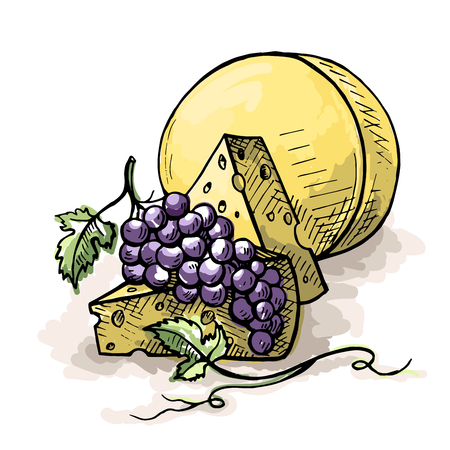 A bunch of grapes and cheese isolated on white background in graphic style hand drawn vector illustration
