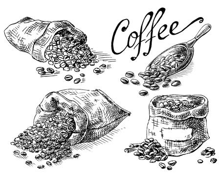 conjunto de granos de café en el bolso en la ilustración a mano de vector de estilo gráfico. Ilustración de vector