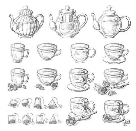Collection of tea leaves and teapot hand drawn vector illustration