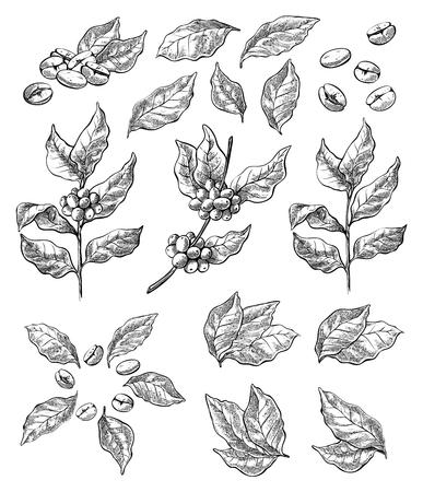 Guirlande de grains de café et de baies en style graphique