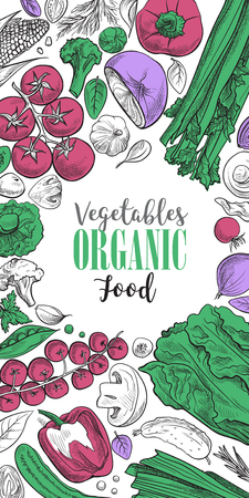 looking for: Fresh vegetables background with space for text, hand drawn or engraved, vintage, retro looking plants, vegetarian and healthy food Illustration