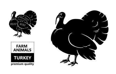Diagrams Of Turkeys - Block And Schematic Diagrams •
