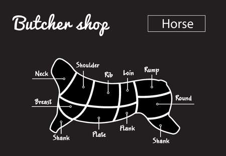 Scheme of cutting horse meat with cutting lines. Ilustração