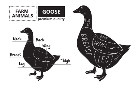 Cut of meat set. Poster Butcher diagram, scheme - Goose. Illustration