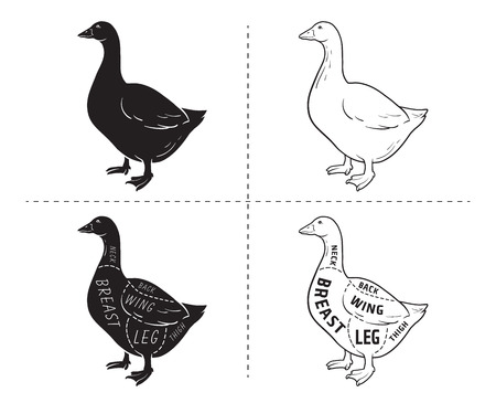 Goose meat part sets for poster butcher diagram black and white illustration. Vettoriali