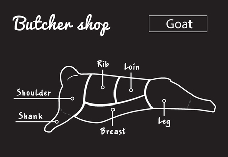 Goat meat part sets for poster butcher diagram on black and white illustration.