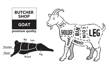 Vector illustration goat cuts diagram or chart. Goat black silhouette. Butcher chart. Ilustração