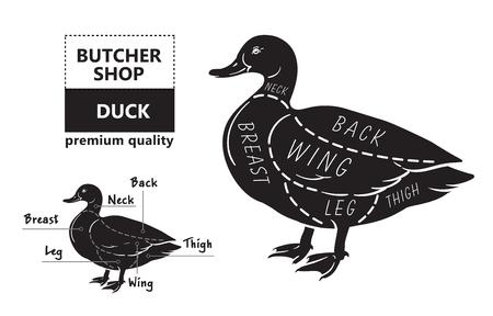 Typographic duck butcher cuts diagram scheme. Premium guide meat label 일러스트
