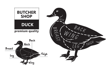 Typographic duck butcher cuts diagram scheme. Premium guide meat label Stock Illustratie