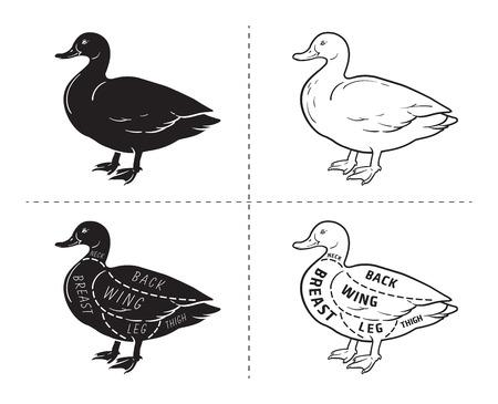 Typographic duck butcher cuts diagram scheme. Premium guide meat label  イラスト・ベクター素材