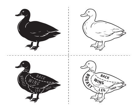 Typographic duck butcher cuts diagram scheme. Premium guide meat label Vectores