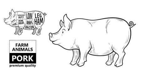 Cut of meat set. Poster Butcher diagram, scheme and guide - Pork. Stock Illustratie