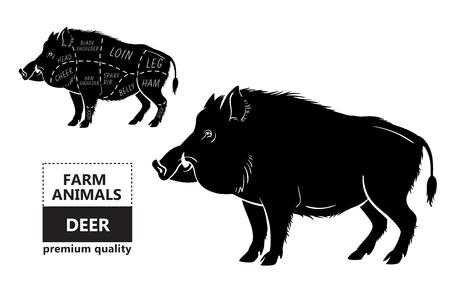 Wild hog, boar game meat cut diagram scheme Illustration