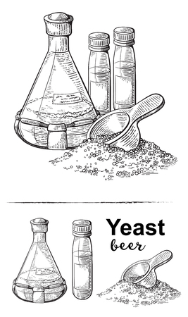 laboratory flask with liquid, brewer yeast, scoop with dry yeast vector illustration.