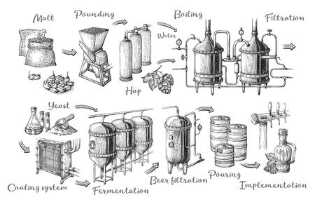 Gráficos de información de cerveza de vector con ilustraciones del proceso de la cervecería. Diseño de producción de cerveza. Esquema de producción de cerveza lager bosquejado a mano. Ilustración de vector
