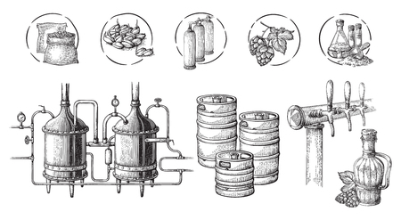 Vector beer infographics with illustrations of brewery process. Ale producing design. Hand sketched lager production scheme. Illustration
