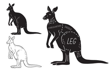 Cut of kangaroo set. Poster Butcher diagram - desert-ship. Vintage typographic hand-drawn.