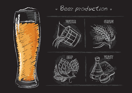 Vintage hand drawn vector illustrations of brewers components Vector Illustration