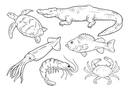 Sea animals line set on white background. Vector illustration