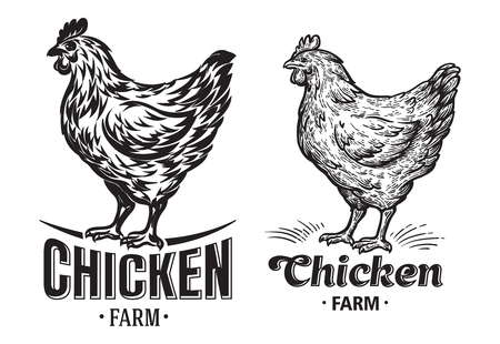 Chicken farm emblem on white background.. Vector illustration