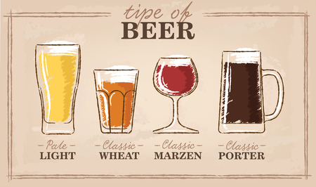 Beer types. A visual guide to types of beer. Various types of beer in recommended glasses. Vector illustration Illustration