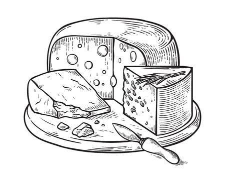Gravure d'ensemble dessiné à la main de fromage. illustration vectorielle.