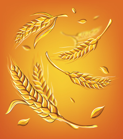 a few ears of wheat on a beige background hand drawing vector illustration sketch
