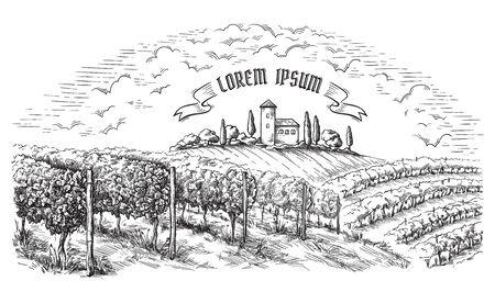 vine plantation hills, trees, clouds, and ancient castle on the horizon vector illustration Illustration