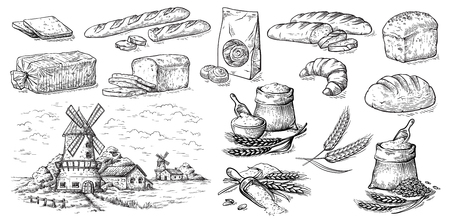 collection of natural elements of bread and flour mill sketch vector illustration