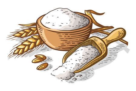 colorfull fresh flour wooden dish scoop on white background vector illustration