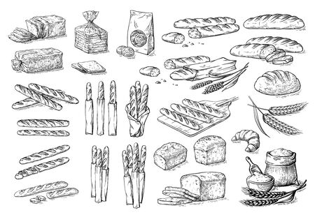 collection of natural elements of bread and flour sketch vector illustration Stock Photo