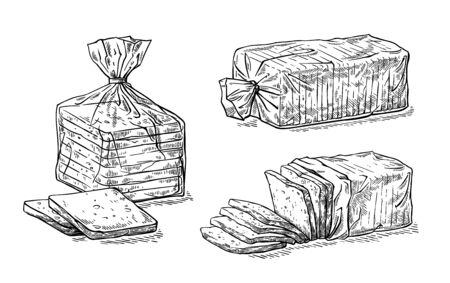 collection of natural elements of sliced toast bread and cellophane package sketch vector illustration