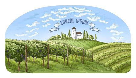 colorfull vine plantation hills, trees, clouds, and ancient castle on the horizon vector illustration Stock Photo