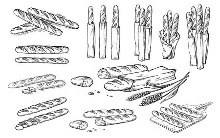 collection of natural elements of bread and flour sketch vector illustration 写真素材