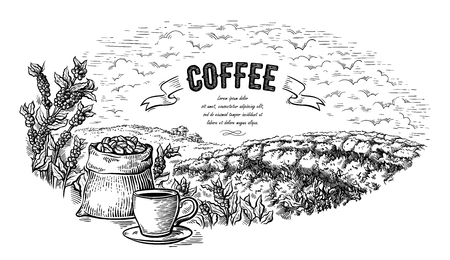 coffee plantation landscape bag bush and cup in graphic style hand-drawn vector illustration.