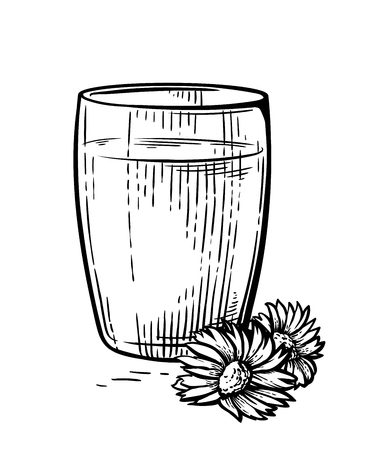 Hand drawn sketch full cup fresh milk dairy flower vector illustration